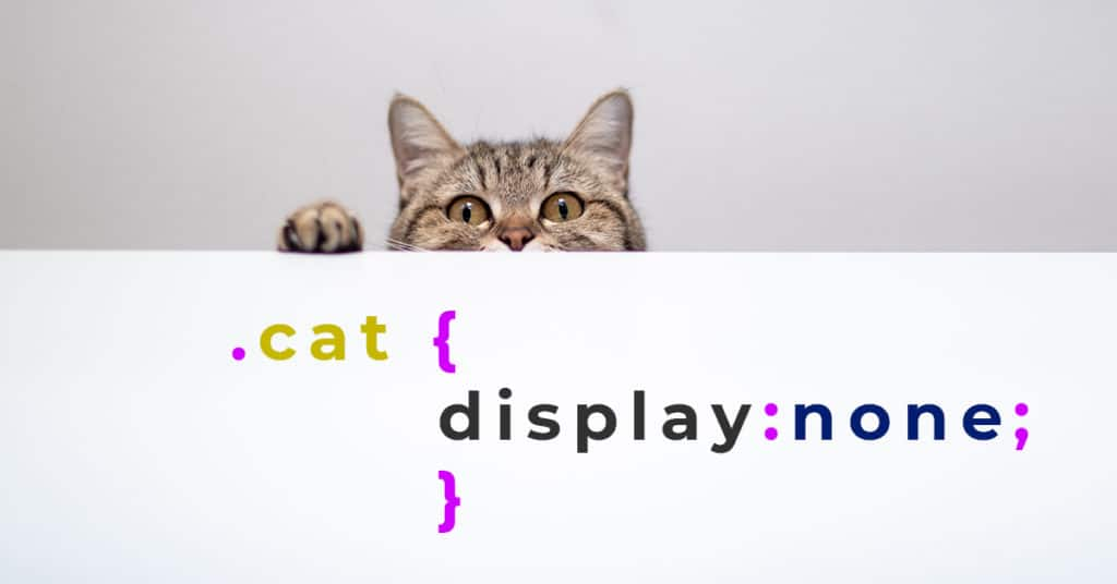 the cat hides using display none css